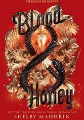 Okładka książki Blood & Honey Shelby Mahurin