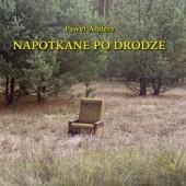 Okładka książki Napotkane po drodze