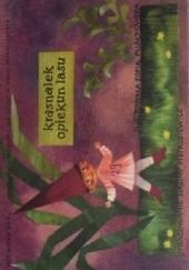Okładka książki Krasnalek opiekun lasu