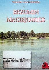 Okładka książki Brzumin - Maciejowice: Obrona przepraw przez Wisłę we wrześniu 1939 roku