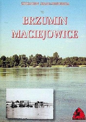 Okładka książki Brzumin - Maciejowice: Obrona przepraw przez Wisłę we wrześniu 1939 roku Zbigniew Gnat-Wieteska