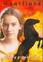 Okładka książki Blizny przeszłości Lauren Brooke