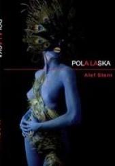 Okładka książki Pola Laska Alef Stern