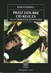 Okładka książki Przez dziurkę od klucza. 30 lat obserwacji szympansów Jane Goodall