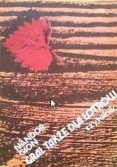 Okładka książki Grał także dla łotrów Nándor Gion
