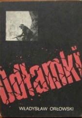 Okładka książki Odłamki Władysław Orłowski