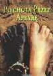 Okładka książki Piechotą przez Afrykę Daniel Defoe