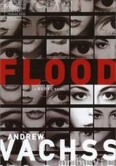 Okładka książki Flood Andrew Vachss