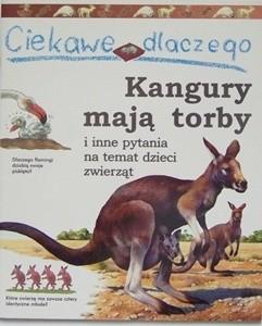 Okładka książki Ciekawe dlaczego kangury mają torby Jenny Wood