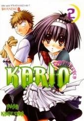 Okładka książki Wampirzyca Karin #2