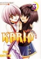 Okładka książki Wampirzyca Karin #3