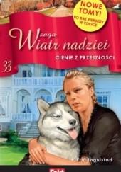 Okładka książki Cienie z przeszłości Frid Ingulstad