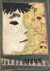 Okładka książki Lizus Edmund Niziurski