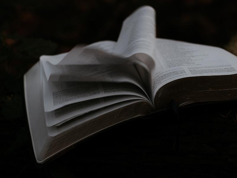Literatura obozowa: 5 książek o wojnie, które trzeba przeczytać