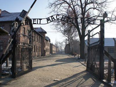 75. rocznica wyzwolenia obozu Auschwitz. Cytaty z książek o Zagładzie